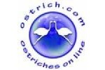 Ostriches On Line coupon codes 2020